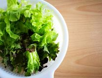 Lettuce salad leaves in white basket, put on wood table. Green and red oaks are hydroponics vegetables. Top view with right copy-space for add text. Concepts of stock photography