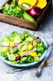 Lettuce salad with mango slices Stock Photos