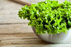 Lettuce salad in metal bowl Stock Photos