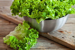 Lettuce salad in metal bowl Royalty Free Stock Photography