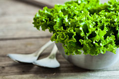 Lettuce salad in metal bowl and spoons Royalty Free Stock Image