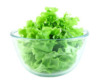 Lettuce salad in transparent bowl. Isolated on white Royalty Free Stock Images