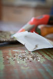 Lettuce seeds. And a packet on a table with a soiled trowel in the background Stock Photo