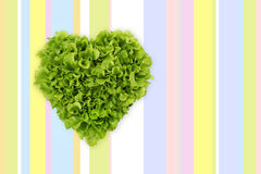 Lettuce in the shape of heart on colored tablecloth Royalty Free Stock Images