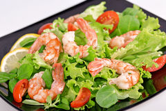 Lettuce with shrimp and tomatoes Royalty Free Stock Photos