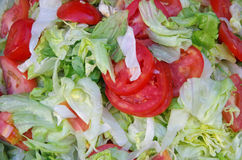 Lettuce and sliced tomato salad Stock Images