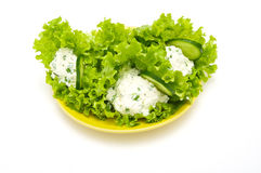 Lettuce stuffed with cream cheese Royalty Free Stock Image
