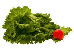 Lettuce and tomato royalty free stock photo