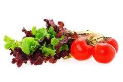 Lettuce and tomato Royalty Free Stock Image