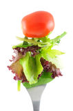 Lettuce and tomato on fork Stock Images