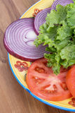 Lettuce Tomato and Red Onion Vegetables Royalty Free Stock Photos