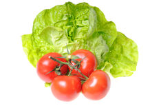 Lettuce and tomatoes Royalty Free Stock Photos