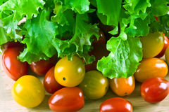 Lettuce and tomatoes Stock Images
