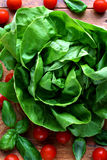 Lettuce and tomatoes. Close up of fresh, green lettuce with cherry tomatoes and basil leaves Stock Photo