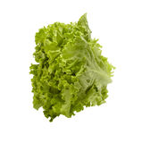 Lettuce vegetable food diet healthy eating Stock Images