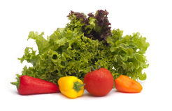 Lettuce and vegetables Royalty Free Stock Photos