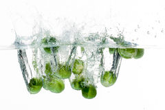 Lettuce in water Royalty Free Stock Image