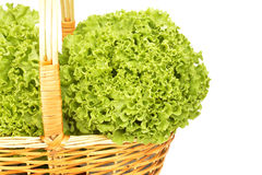 Lettuce  in wicker basket isolated Stock Photography
