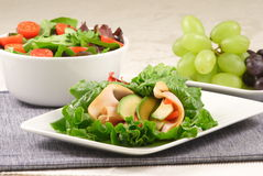 Lettuce wrap with salad and fruits Stock Photography