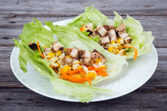 Lettuce wraps with chicken Royalty Free Stock Photo