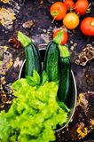 Lettuces, tomatoes  and zucchinis Stock Images