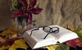 lettura d'autunno Fotografie Stock