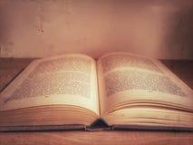 Lettura del libro Fotografia Stock