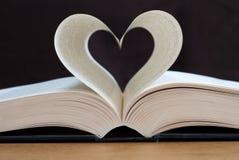 Lettura di amore Immagini Stock
