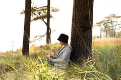 Lettura di seduta della donna e scrivere osservare fuori la bella vista naturale fotografia stock
