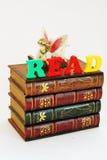 Lettura leggiadramente del libro fotografie stock