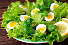 Letucce, cucumber, spinach, basil and quail eggs salad Stock Photography