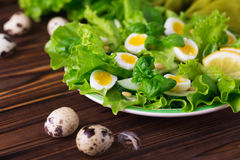 Letucce, cucumber, spinach, basil and quail eggs salad Royalty Free Stock Image
