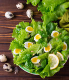 Letucce, cucumber, spinach, basil and quail eggs salad Stock Photos