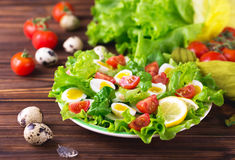Letucce, cucumber, spinach, basil and quail eggs salad Royalty Free Stock Photo
