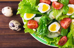 Letucce, cucumber, spinach, basil and quail eggs salad Royalty Free Stock Photography