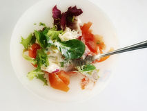 LETUCCE AND TOMATOES SALAD Stock Images