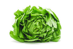 Letuce Royalty Free Stock Photography