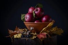 Letzte Herbstäpfel stockfoto