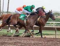 Letzte Pferderennen in Arizona bis Fall Lizenzfreie Stockfotografie
