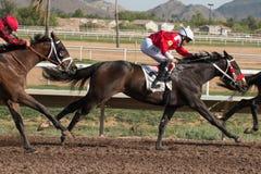 Letzte Pferderennen in Arizona bis Fall Stockfotos