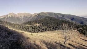 Letzte Strahlen berühren das Hochgebirge im Herbst Lizenzfreies Stockfoto
