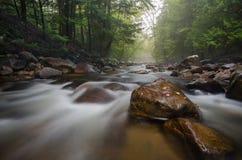 Letzte Tage des Sommers auf einem Adirondack-Strom Stockfoto