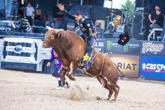 Letzter Cowboy Standing Lizenzfreie Stockfotos