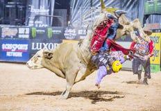 Letzter Cowboy Standing Stockfoto