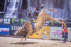 Letzter Cowboy Standing Lizenzfreies Stockbild