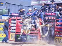 Letzter Cowboy Standing Lizenzfreies Stockfoto