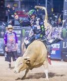 Letzter Cowboy Standing Stockbilder