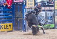 Letzter Cowboy Standing Stockfotos