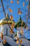 Letzter Herbstlaub und goldene Hauben Stockfoto