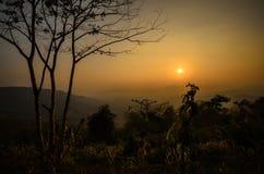 Letztes Sun-Licht Stockfotos